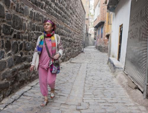 Turquie, le voyage mémoriel des Arméniens 2/2 (RTS)